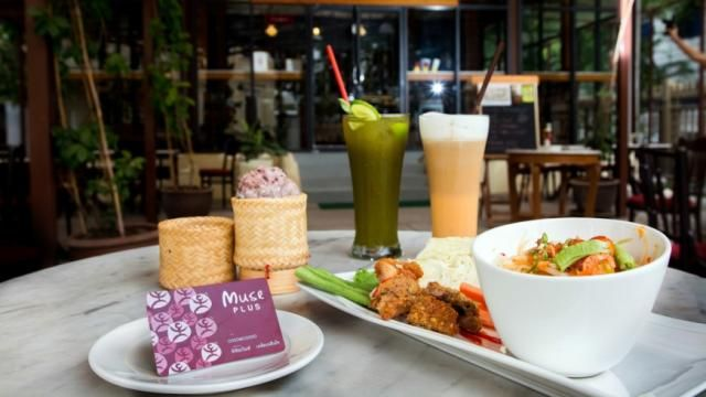 Muse Kitchen By Elefin Coffee