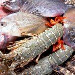 ลูกชิ้นปลากราย จังหวัดนครสวรรค์ เมืองแห่งอาหารและการกินขนานแท้